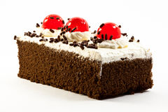 Chocolate Cake Garnished With Cherries Stock Photography