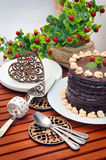 Chocolate Cake. Stock Image