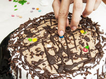 Chocolate cake with icing Royalty Free Stock Photo