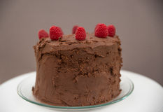 Chocolate cake with icing and fresh berry Royalty Free Stock Images