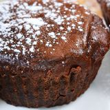 Chocolate cake with icing sugar Stock Images