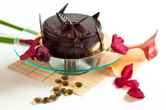 Chocolate cake isolated decorated Stock Image