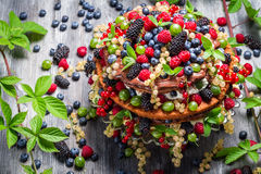 Chocolate cake made of mix wild berries Royalty Free Stock Photography