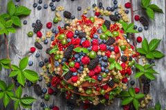Chocolate cake made of mix wild berries Royalty Free Stock Image