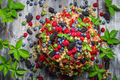 Chocolate cake made of mix wild berries Royalty Free Stock Photos