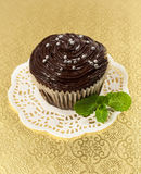 Chocolate cake with mint leaves Royalty Free Stock Photography