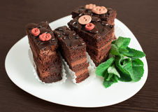 Chocolate cake with mint Royalty Free Stock Photo