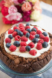 Chocolate Cake with mixed berries Stock Photos