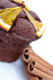 Chocolate cake with oranges Royalty Free Stock Images