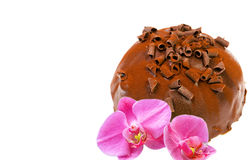 Chocolate cake and orchid flower Stock Photography