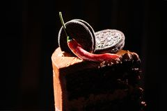 Chocolate cake piece. Chocolate cake  with cookies Royalty Free Stock Image
