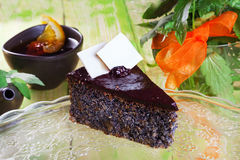 Chocolate cake with poppy seeds slice Stock Images
