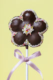Chocolate cake pops in flower shape Stock Images