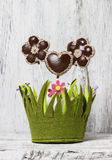 Chocolate cake pops in flower shape, lavishly decorated with col Stock Images