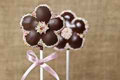 Chocolate cake pops in flower shape Royalty Free Stock Photo