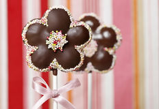 Chocolate cake pops in flower shape Stock Photography