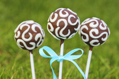Chocolate cake pops on fresh green grass Royalty Free Stock Photo