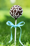 Chocolate cake pops on fresh green grass in a beautiful garden. Stock Photo