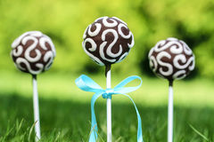 Chocolate cake pops on fresh green grass in a beautiful garden. Stock Photos
