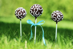 Chocolate cake pops on fresh green grass in a beautiful garden. Stock Images