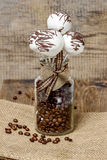 Chocolate cake pops in jar of coffee beans Royalty Free Stock Images