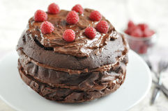 Chocolate Cake with Rapberries Stock Images