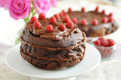 Chocolate Cake with Rapberries Royalty Free Stock Photos