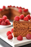 Chocolate Cake with Raspberries. Slice of Chocolate Cake with Raspberries Royalty Free Stock Photos