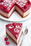 Chocolate cake with raspberry jelly Stock Images