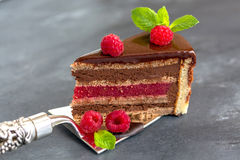 Chocolate cake with raspberry jelly. Royalty Free Stock Images