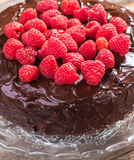 Chocolate cake with Raspberry Stock Photo