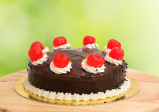 Chocolate cake with red cheery. On green background Royalty Free Stock Images