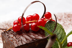 Chocolate cake with red currant Royalty Free Stock Photo