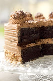 Chocolate cake side view. Chocolate cake close up side view Royalty Free Stock Photo