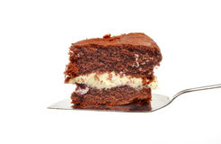 Chocolate cake on slice. Slice of chocolate sponge cake on a cake slice isolated against white Royalty Free Stock Image