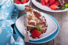 Chocolate cake with sour cream frosting Royalty Free Stock Photos