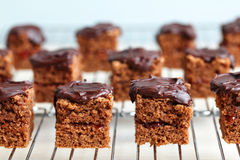 Chocolate cake squares on a cooling rack Stock Photography