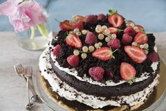 Chocolate cake with strawberry and red currant royalty free stock images