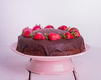 Chocolate cake with strawberry. Royalty Free Stock Photography