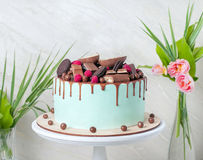 Chocolate cake with sweet raspberries and candies with Mint glaze on white wooden stand. close up.  Royalty Free Stock Images