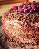 Chocolate sponge cake. Sprinkled with crumbs of chocolate, decorated with cherries on tray stain-roof Royalty Free Stock Photography