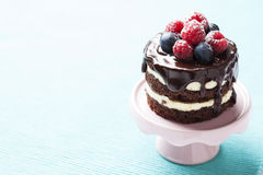Chocolate cake Stock Photos