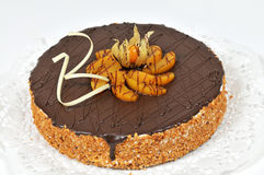 Chocolate cake with walnuts. On white decorative paper Stock Image
