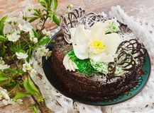 Chocolate cake with white flower Stock Images