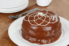 Chocolate cake with white icing Stock Images