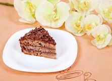 Chocolate cake on white plate Stock Photography