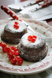 Chocolate cakes with redcurrants. Chocolate cakes with fresh redcurrants Stock Photos