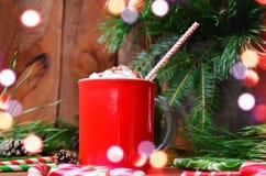 Chocolate caliente con el marsmallow Imagen de archivo libre de regalías