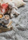 Chocolate caliente con las melcochas, el oso de peluche, los libros, la almohada y la manta Fotografía de archivo libre de regalías