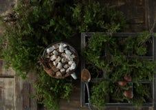 Chocolate caliente con las melcochas y las nueces en un fondo de madera con el musgo, visión superior Foto de archivo